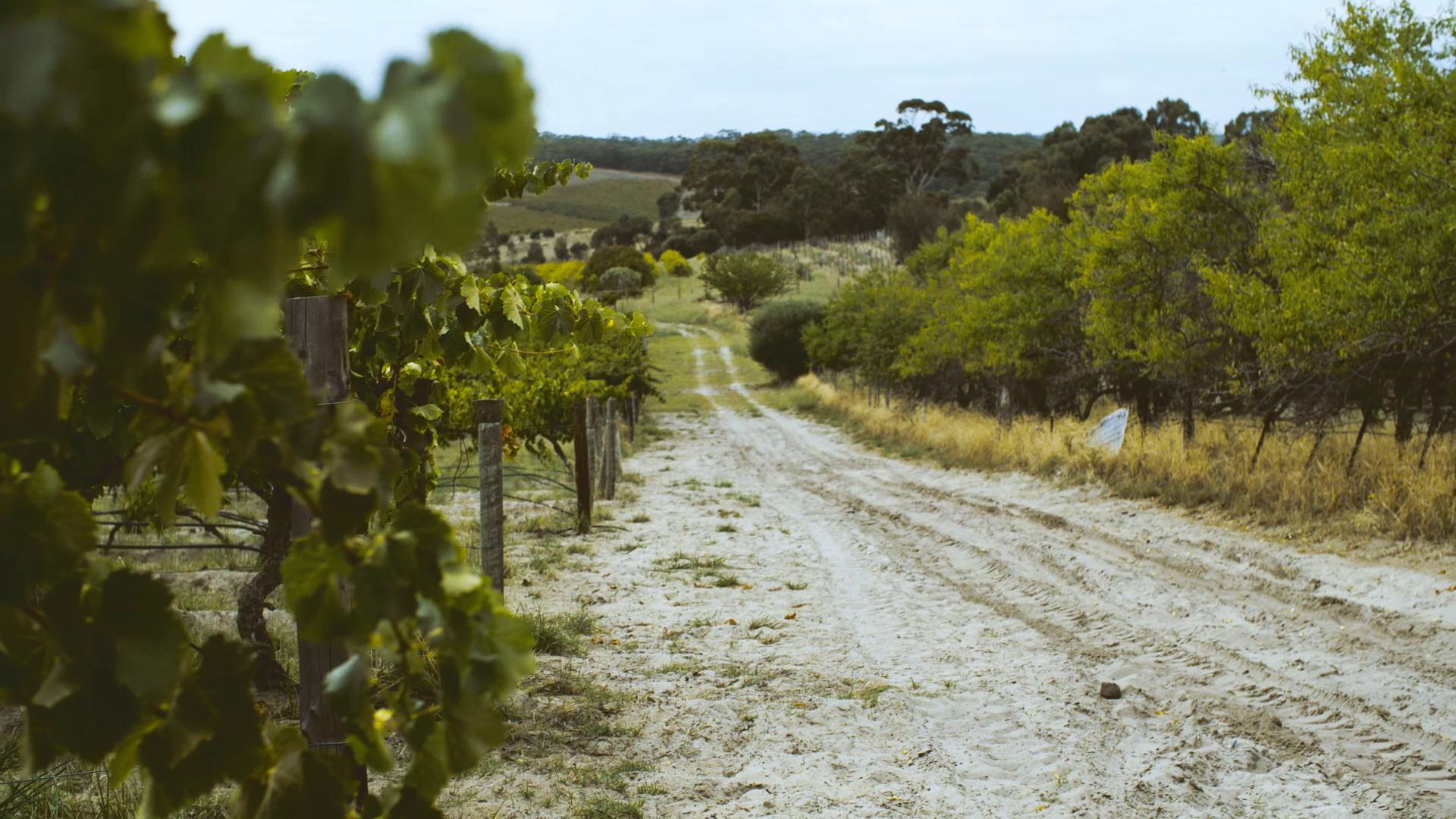 Ulithorne wineのDONA GSMが新しく入荷しました。